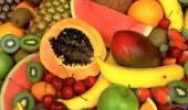 Las Frutas Tropicales y sus beneficios