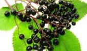"""""""Súper frutas"""" para la salud"""
