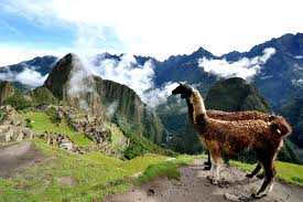 Perú elegido como 'Mejor destino gastronómico'