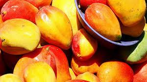 Inició la Expo Mango 2014